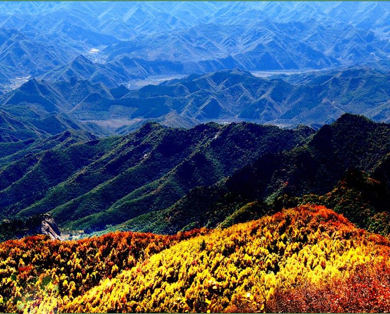 白草洼有四海生态园之称,即:林海、草海、石海、云海。总面积54平方公里,景区平均海拔1188米,最高峰1768米。  公园门口那白桦树的雕塑彰显出了白草洼公园的一大特点。这里的白桦林号称是华北地区极为罕见,林相齐整,保存最为完好的一片原始次生白桦林,面积足有3平方公里。  草洼有四海生态园之称,草海,即在白草洼主峰附近,有大面积的高山草甸,这里每到夏季,上百种各类鲜花盛开其中,争奇斗妍,美不胜收。  林海,指的就是白草洼公园内97.
