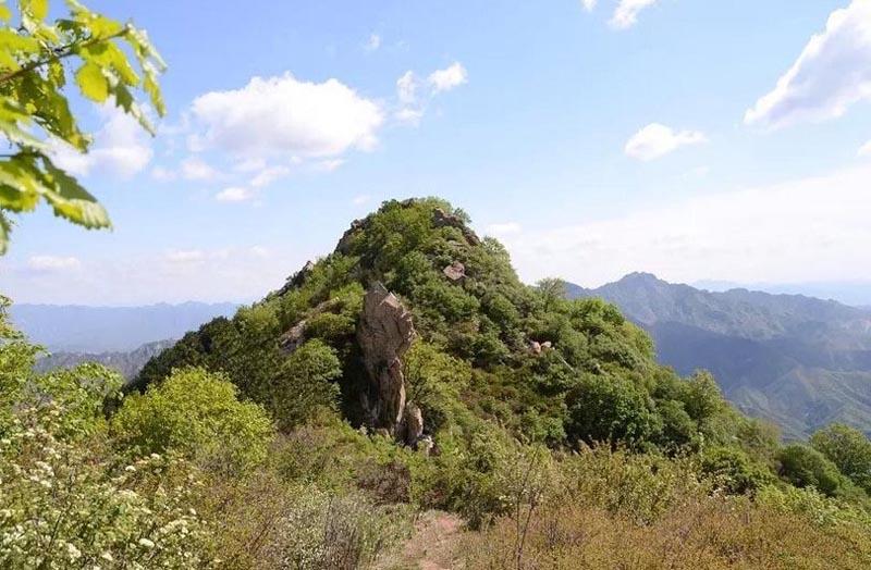 虎山风景区位于保定市曲阳县北侧,因为山顶有一块形状像猛虎的石头而得名。  与著名的北岳恒山相连,主峰三尖梁海拔1100多米,由于与唐县、阜平接壤,形成了一脚踩三县的山岳旅游景观,景区面积达20多平方公里。  虎山风景区以自然风光为主,山下有湖泊、山间有寺院。  来此可以爬山锻炼、乘船泛舟,还可以参观展览、拜佛祈福,是周末出游的好去处。  山间有一条淘金长廊,在隧道内展示了虎山上曾经的淘金文化。  虎山风景区并不高,从山下爬到山顶大约2小时左右,游玩整个景区约需4个小时。  在山脚下有金泉湖、石雕